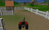 Tractor in my farm