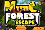 Mystic Forest Escape
