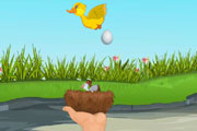 Falling Eggs And Chicks
